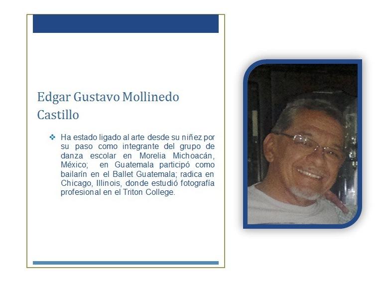HOJA DE VIDA EDGAR GUSTAVO MOLLINEDO CASTILLLO 2015