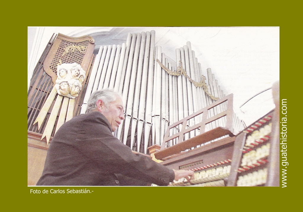 Organo de Catedral