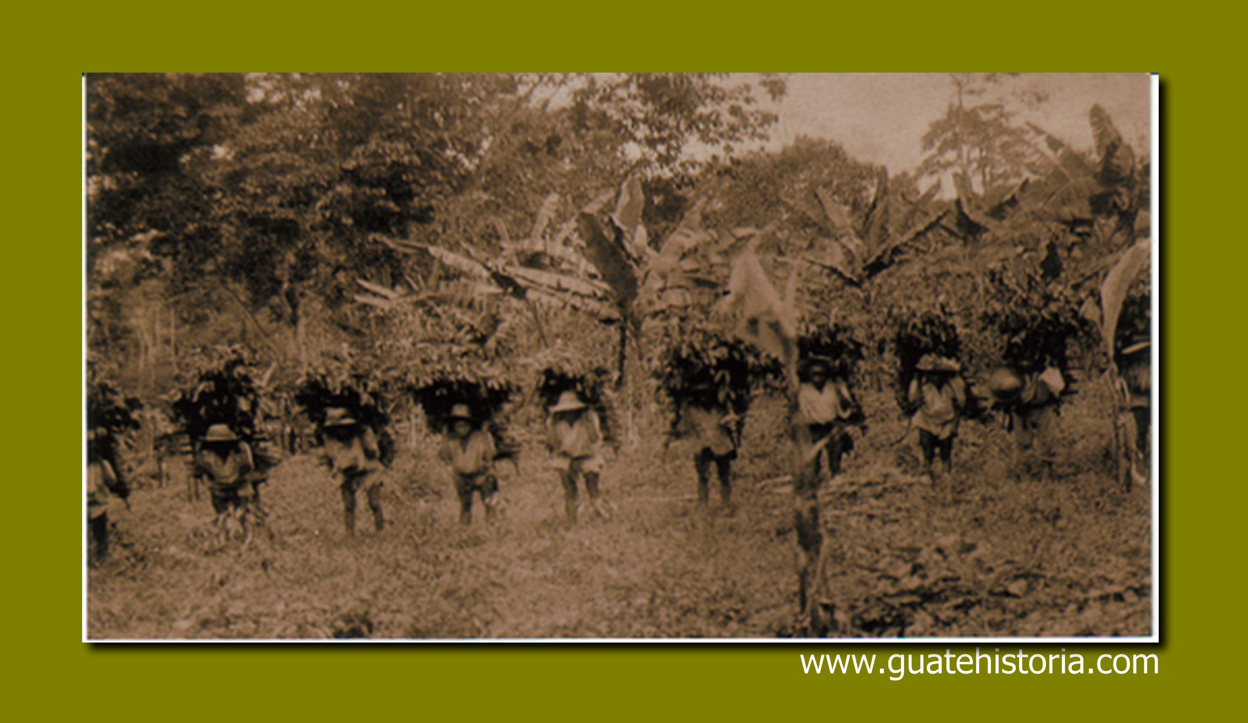 trabajadores-de-finca-en-la-costa-sur-de-guatemala-1875